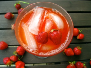 2009_08_05-Strawberry